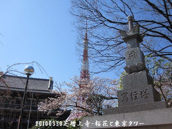 100330zhojyoji04