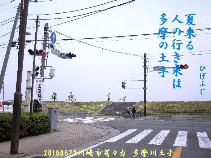 100522tamagawa01