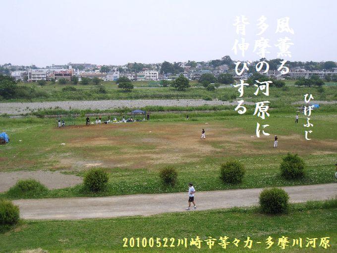 100522tamagawa03