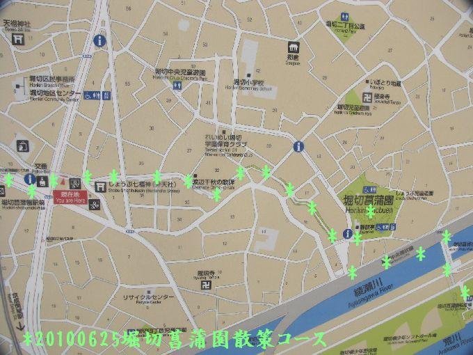100625suiro-hana01
