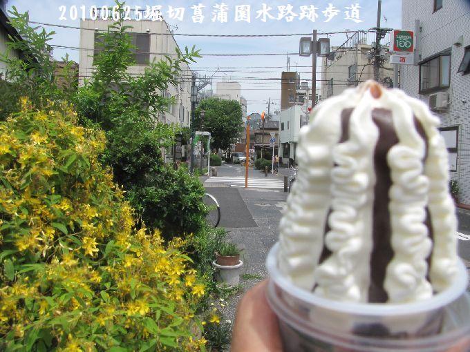 100625suiro-hana03