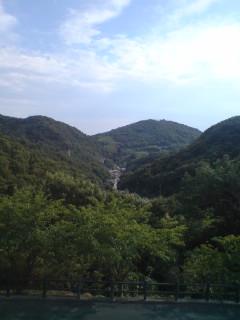 jimotoyama.jpg