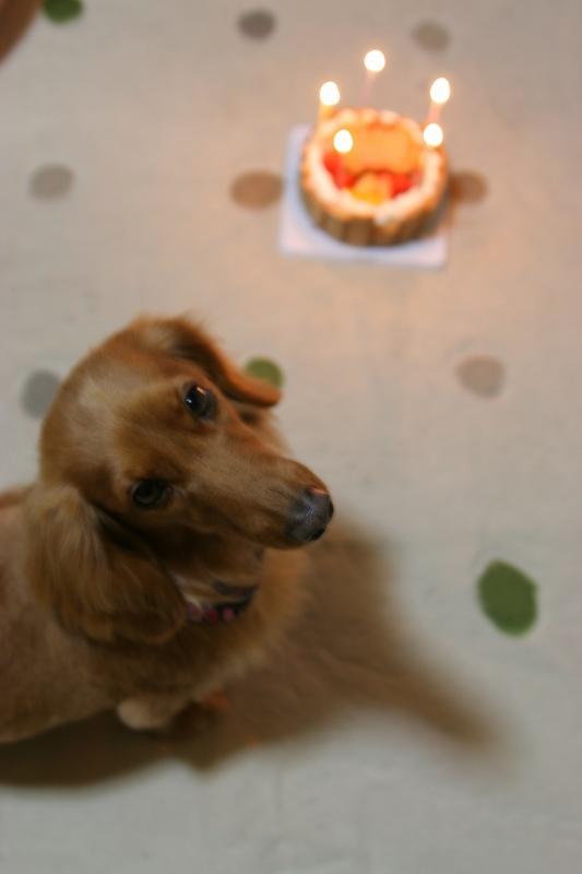 メイ姫とケーキ