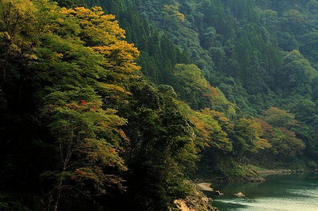 IMG_5127杉安峡の紅葉