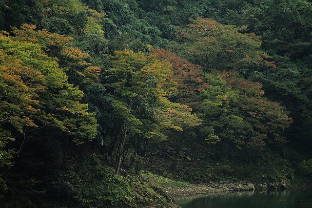 IMG_5130杉安峡の紅葉