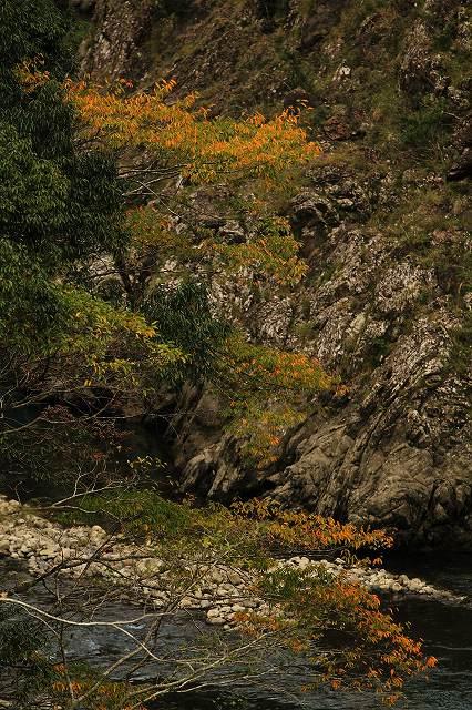 IMG_5157杉安峡の紅葉