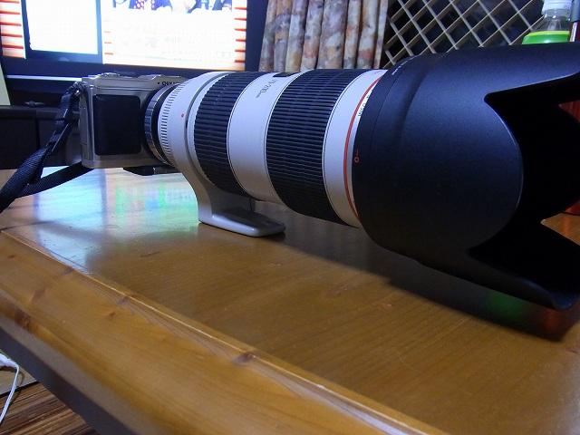 RIMG0044-1.jpg