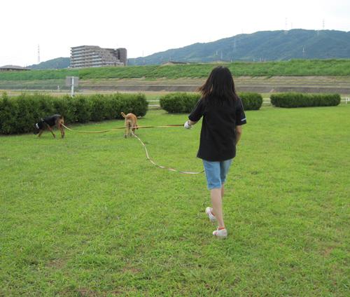 walk2