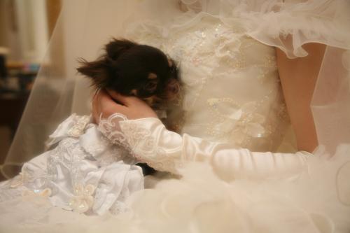 結婚式当日4