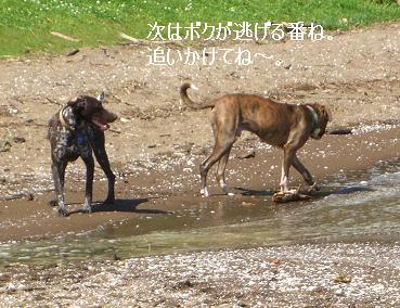 3_20080921201859.jpg