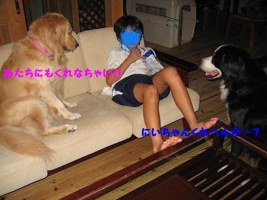 IMG_0525-1.jpg
