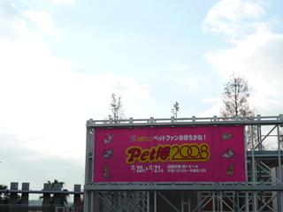 P1000523s.jpg