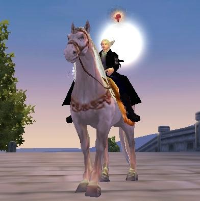 20090630(白馬の王子様?)