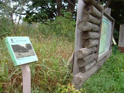 遺跡保存庭園