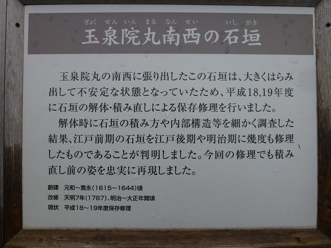 P1000710.jpg