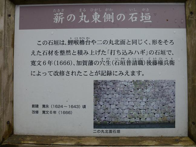 P1000718.jpg