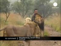 ライオンとハグ(抱き合う)する動物行動学者&襲われるハンター