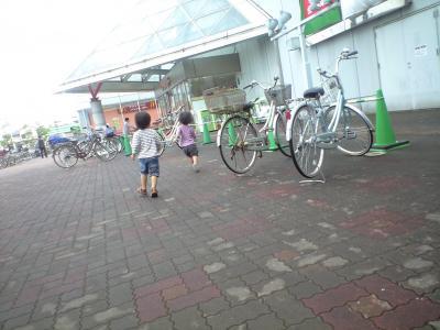 PAP_0536_convert_20101001061242.jpg