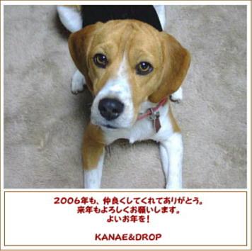 20061230191642.jpg