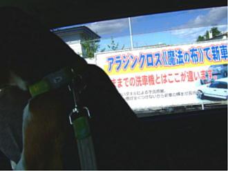 2006_09230044.jpg