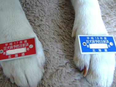2007_01170058.jpg