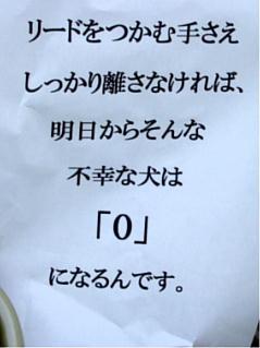 2007_09020052.jpg
