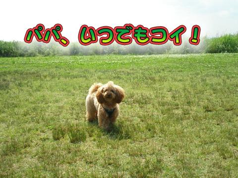 01_20090602045925.jpg