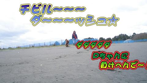 P4260639.jpg