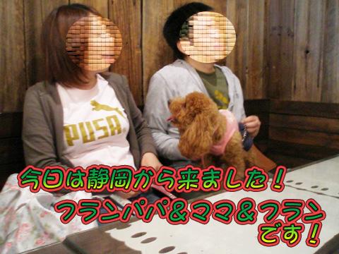 P5010056_20090506152542.jpg