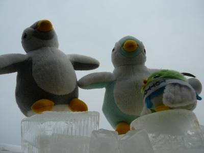 ペンギンさん、こんにちは。南極に来たよ!?