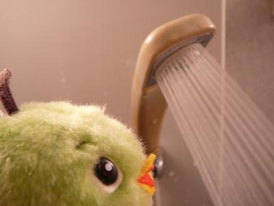 シャワーを必要以上に出しっぱなしにしないぞっ!