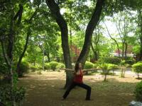 yoga 千葉