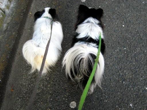 竜馬&太郎2