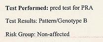 testreport-2.jpg
