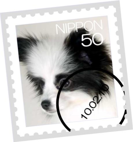 [stamp10181735]kaguya0206