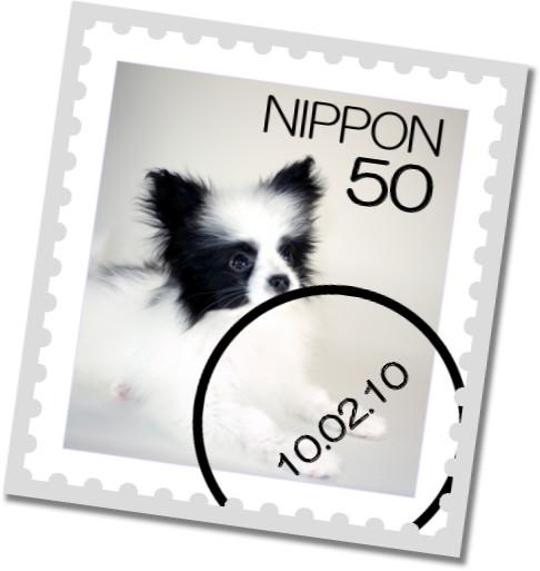 [stamp10182578]kaguya02063