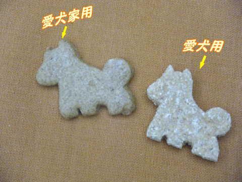 2009_1014星河湾酒店0005