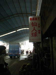 2010_0322星河湾酒店0003