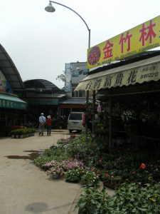 2010_0322星河湾酒店0004