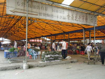 2010_0322星河湾酒店0007