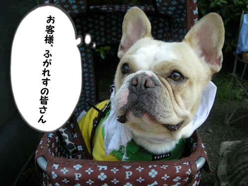 furima.jpg