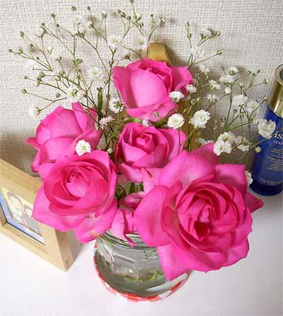 20090108薔薇②