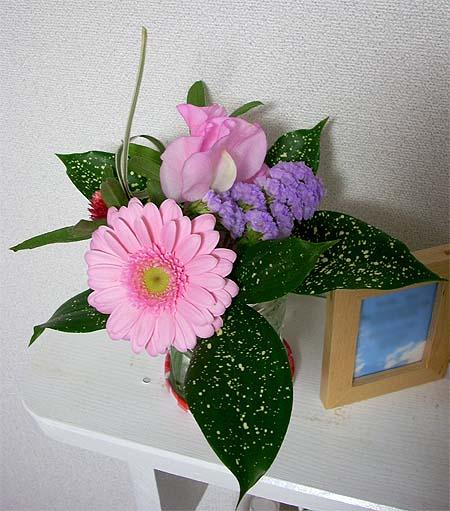 200903063月の部屋花