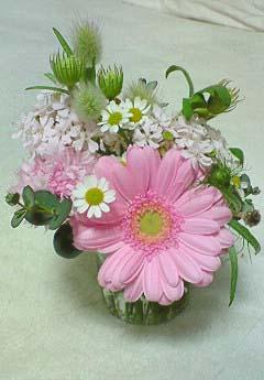 20090318お花屋さんで