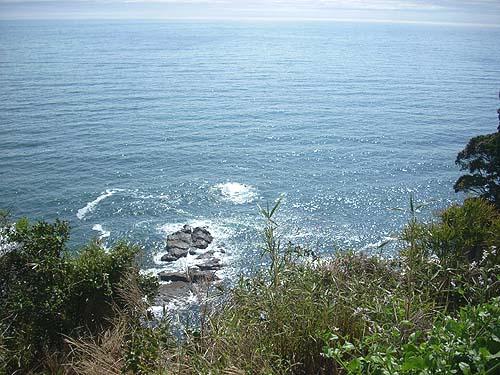 20090320海