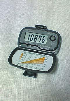 20090406万歩計