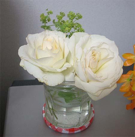 20090506花①