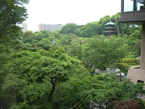 20090505椿山荘②