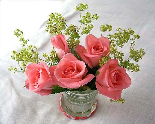20090615花