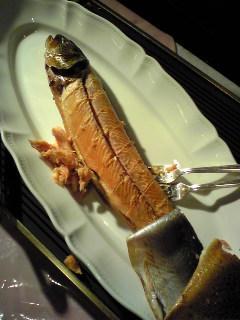マスににた魚だった